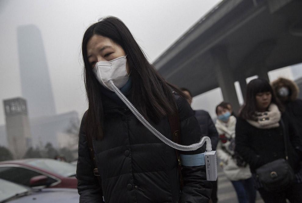 Жизнь современного Китая (12 фото))