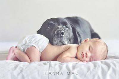 foto bayi lucu dan unik