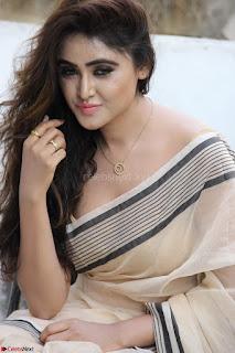 Sony Charishta in Brown saree Cute Beauty   IMG 3603 1600x1067.JPG