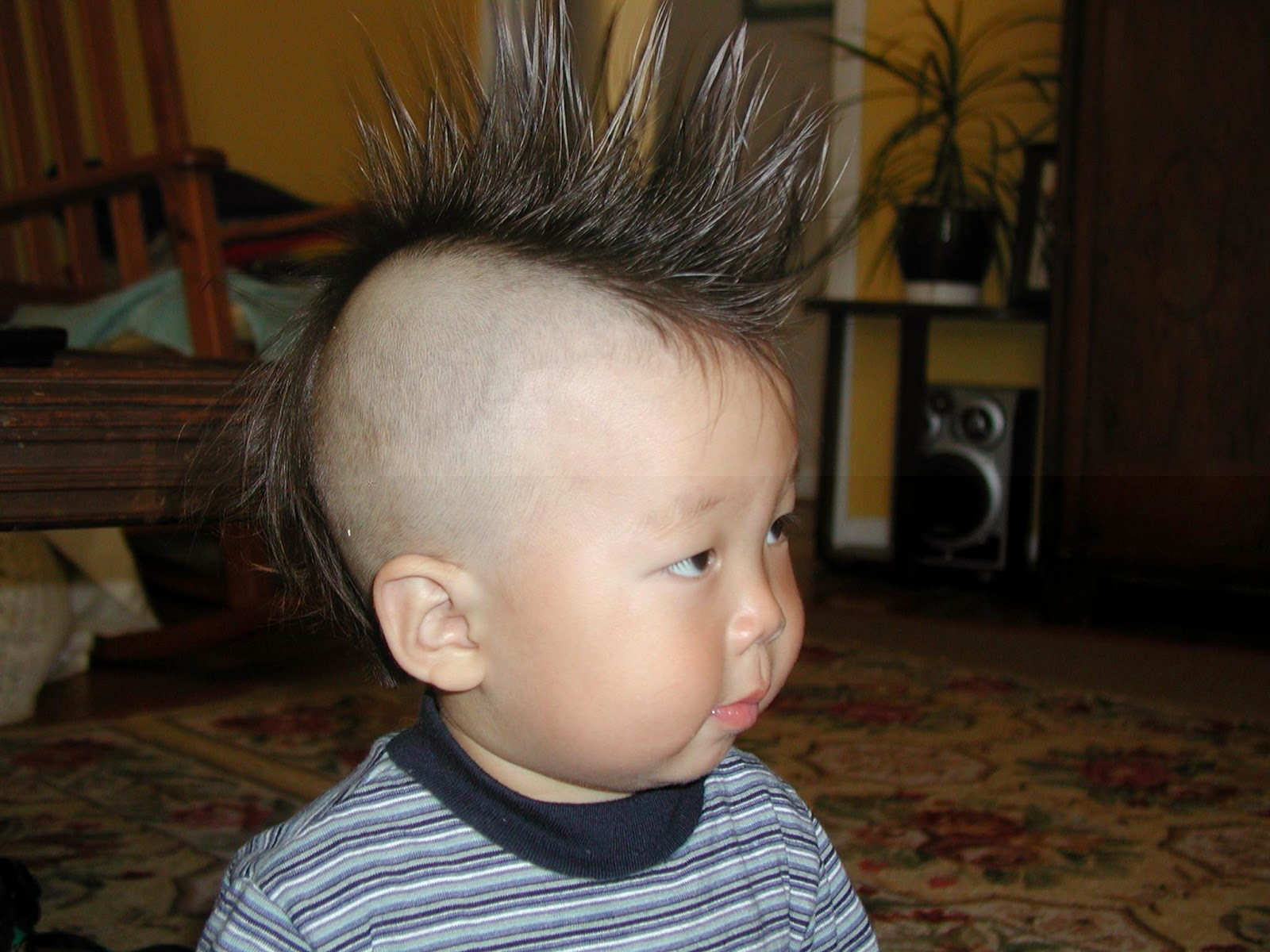 Stupendous Kids Hairstyle Amazing Amp Trendy Hairstyles For Boys Calgary Hairstyle Inspiration Daily Dogsangcom