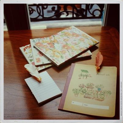 d i y sp cial rentr e 2 le presse papier emplum cultivez moi. Black Bedroom Furniture Sets. Home Design Ideas