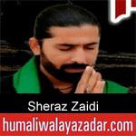 https://www.humaliwalyazadar.com/2018/09/sheraz-zaidi-nohay-2019.html