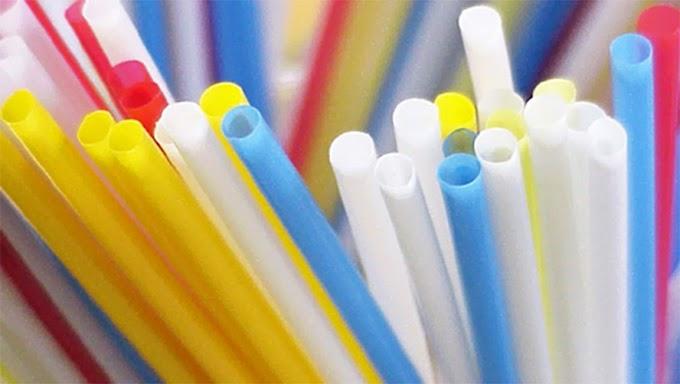 PARAÍBA: Proibição de canudos de plástico em bares, restaurantes e comércios da Paraíba avança na ALPB.