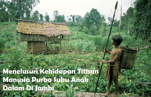 Menelusuri Kehidupan Titisan Manusia Purba Suku Anak Dalam Jambi