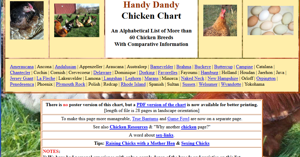 Open Inventions: Henderson's ICYouSee Handy-Dandy Chicken