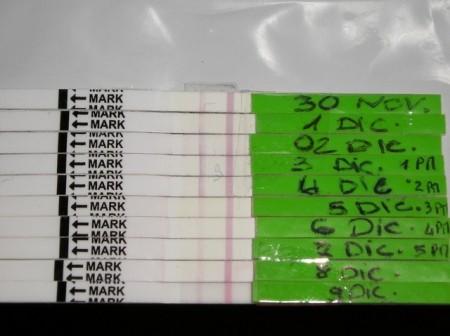 Test di Gravidanza + Test di Ovulazione kit da 100 test ...