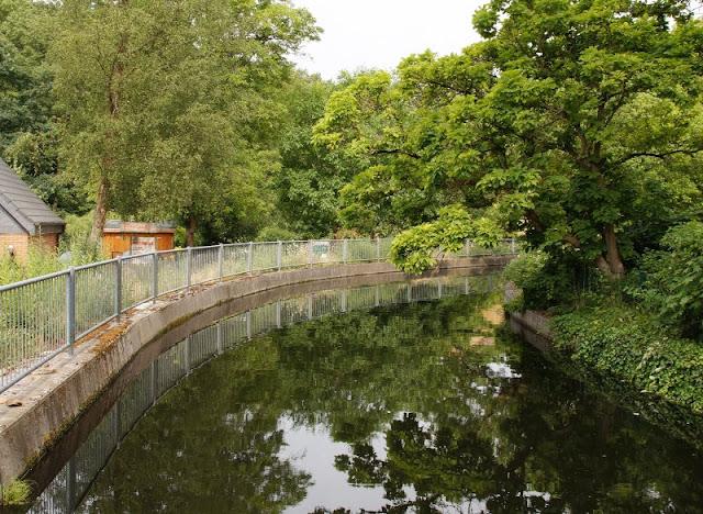 Ein Familien-Ausflug zu den Fischen: Die Fischtreppe an der Schwentine. Der Fluss ist an der Rastorfer Mühle angestaut.
