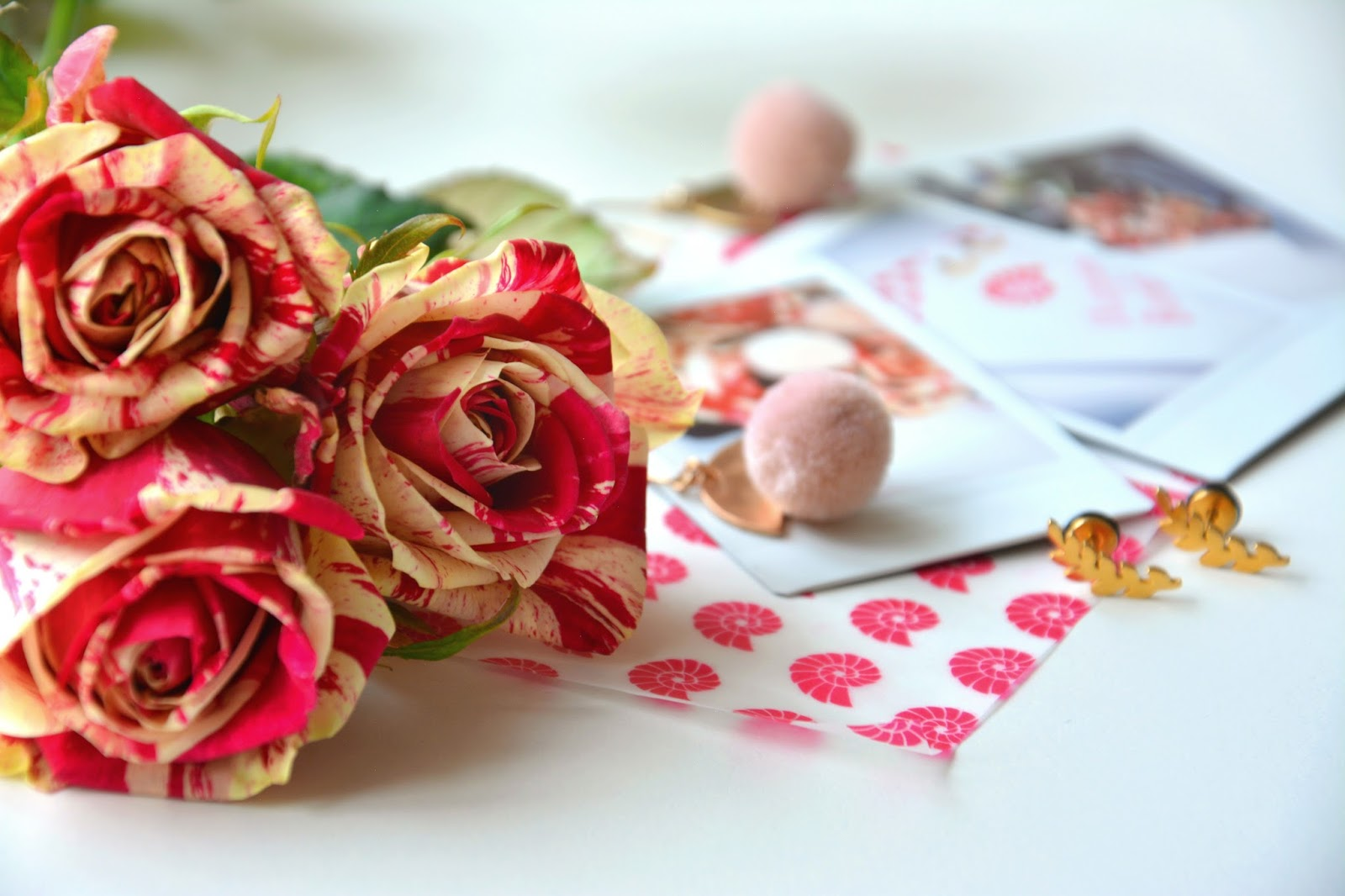 Instax Mini 90 Retro Camera Pictures; Happiness Boutique Leafy Fern Stud Earrings; Happiness Boutique Pom Pom Earrings; Marbled Red & Cream Roses