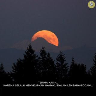 https://captionremaja.blogspot.com/2018/08/caption-instagram-bijak-paling-diminati-remaja.html
