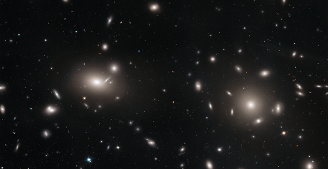 This is a Hubble Space Telescope mosaic of a portion of the immense Coma cluster of over 1,000 galaxies, located 300 million light-years from Earth. Hubble's incredible sharpness was used to do a comprehensive census of the cluster's most diminutive members: a whopping 22,426 globular star clusters. Among the earliest homesteaders of the universe, globular star clusters are snow-globe-shaped islands of several hundred thousand ancient stars. The survey found the globular clusters scattered in the space between the galaxies. They have been orphaned from their home galaxies through galaxy tidal interactions within the bustling cluster. Astronomers will use the globular cluster field for mapping the distribution of matter and dark matter in the Coma galaxy cluster. Credits: NASA, ESA, J. Mack (STScI) and J. Madrid (Australian Telescope National Facility)