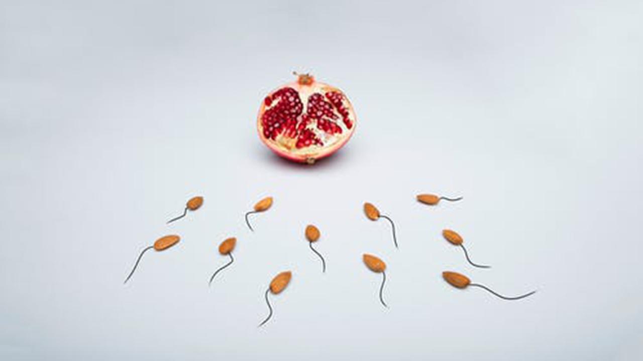 5 Makanan Kesuburan Pria | Kualitas Sel Sperma yang Jarang Diketahui
