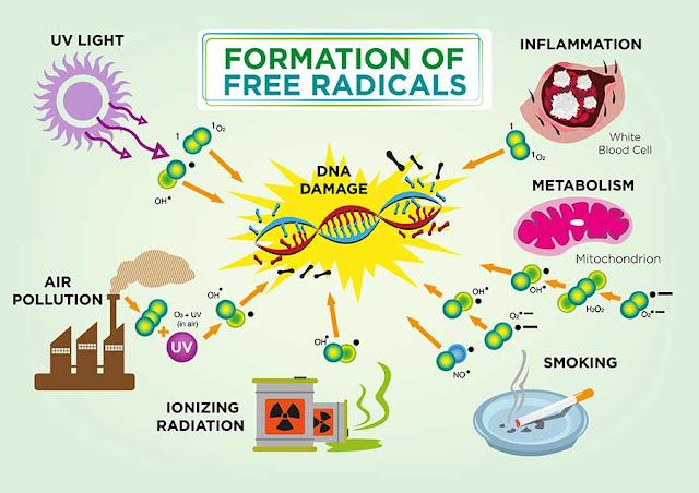10 Jenis Bahaya radikal bebas
