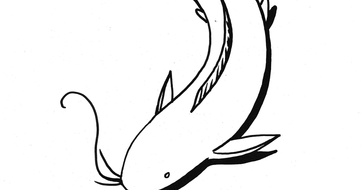 Download 65 Gambar Ikan Lele Kartun Paling Bagus Gratis