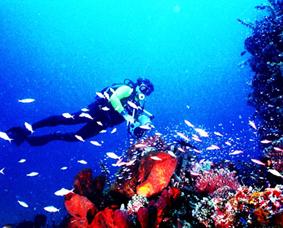 keindahan-alam-objek-wisata-taman-laut-nasional-bunaken-manado
