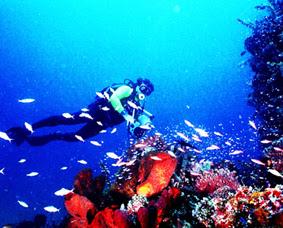 keindahan-alam-wisata-taman-laut-nasional-bunaken-manado