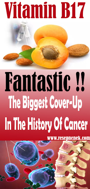 Vitamin B17: The Biggest Cover-Up In The History Of Cancer