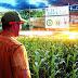 O agronegócio pode movimentar um trilhão de dólares em 2024
