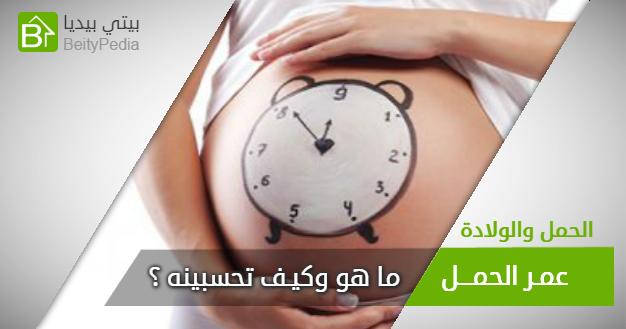 عمر الحمل