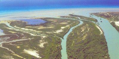 Τι μπορούμε να μάθουμε για τον Ποταμο Καλαμα μελετώντας τα βακτήρια κατά μήκος της ροής του;