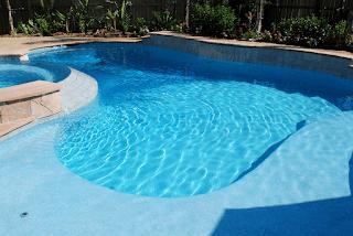 Custom Free Form Inground Pools 2