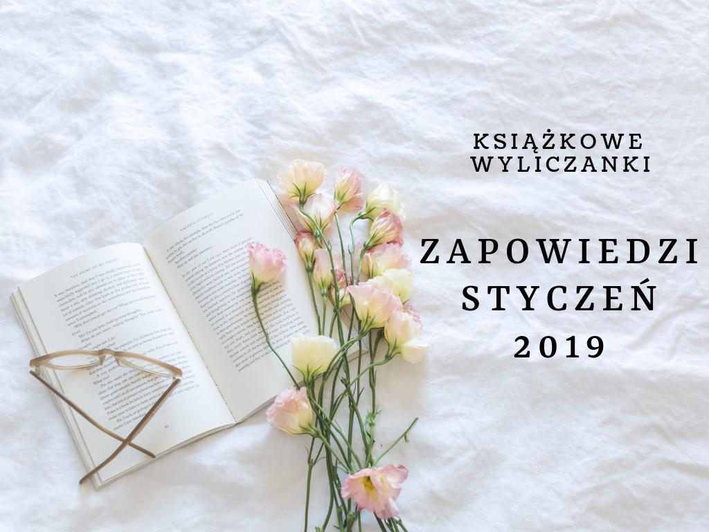 Styczeń w księgarniach, czyli nowości na półkach 01.2019