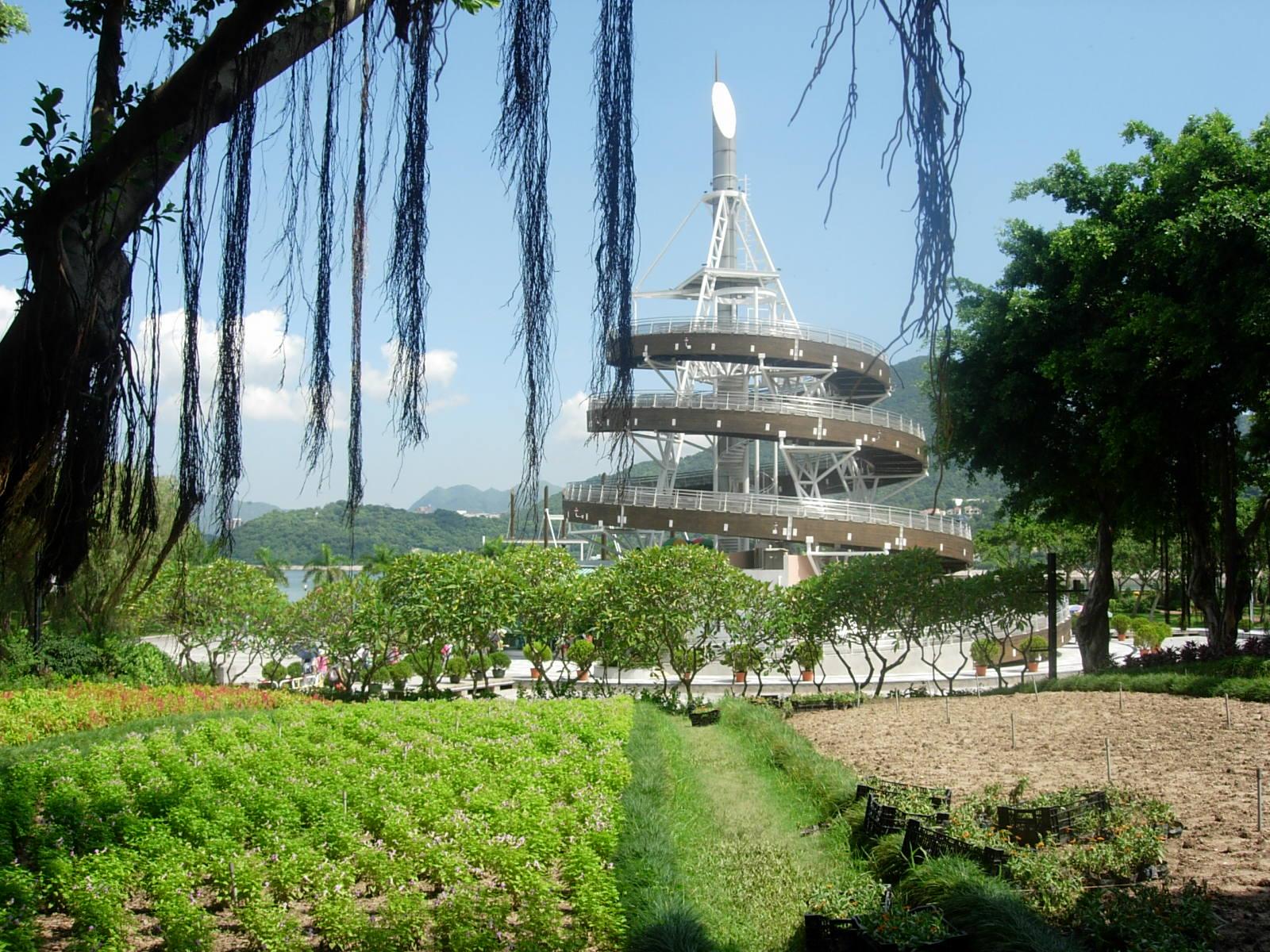 All from the world: 大埔海濱公園