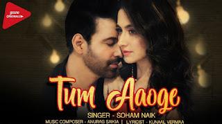 Tum Aaoge Lyrics | Soham Naik | Ritrisha Sarmah