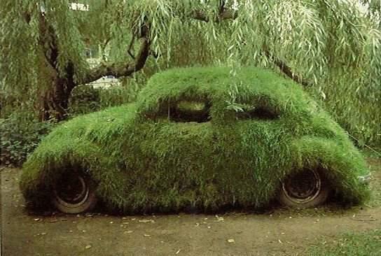 funny+car+4