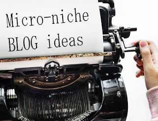 Micro Niche blog ideas