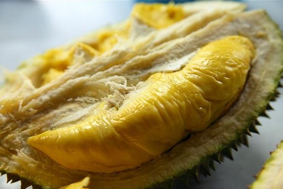 cara memilih durian yang lezat