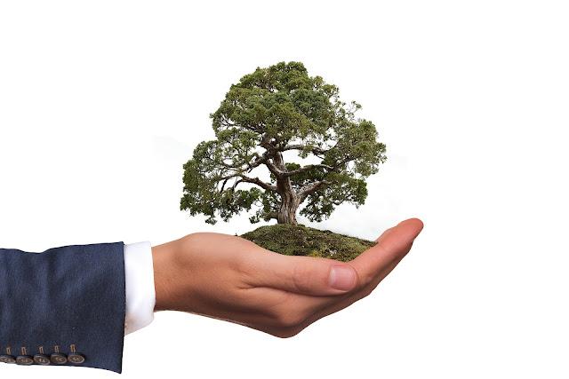 proteção ao meio ambiente