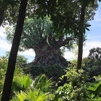 Arbre de Vie Animal Kingdom Orlando