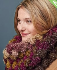 http://www.yarnspirations.com/pattern/crochet/quick-and-cozy-cowl