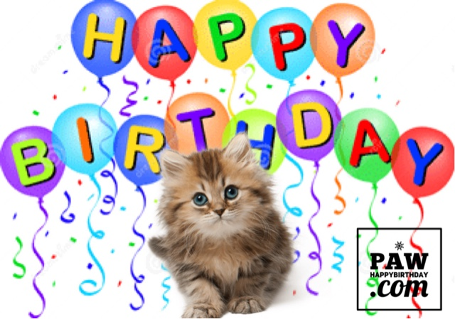 Happy Birthday Animation Ecards Share Free Greeting