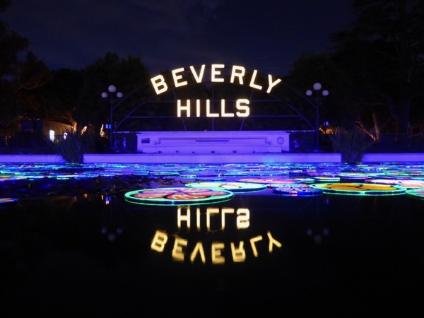 Beverly Hills Lily Pond Portraits of Hope installation