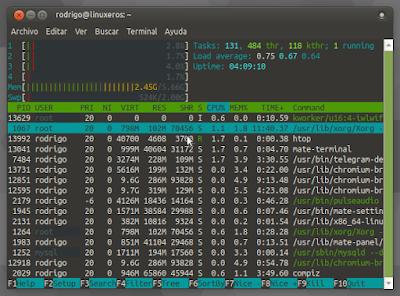 Verificar el consumo del memoria en Linux - htop
