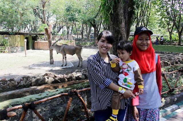 Berlibur-kebun-binatang-surabaya-bersama-keluarga-mengajari-anak-nama-hewan