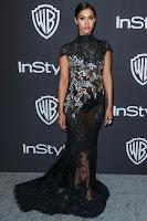 Janina Gavankar in Black Transparent Long Dress