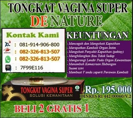 Tongkat Vagina Super Diantar Ke Gunung Kidul