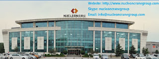 China nucleon crane group