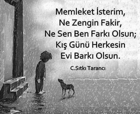çocuk, köpek, dostluk, kış, yağmur, zor hayat, fakir, garip,