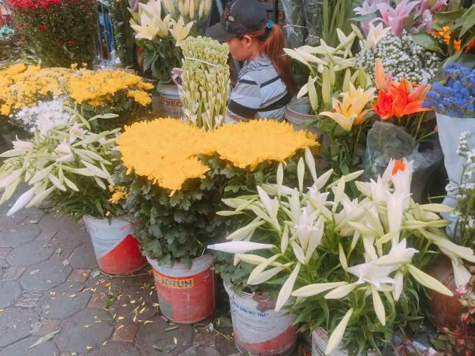 Tháng 4 về ngập phố Hà Nội với loài hoa báo hè - Ảnh 3