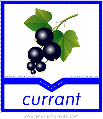 Currant - English flashcards for the fruits, vegetables and berries topic