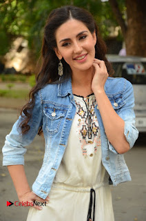 Actress Farah Karimi Pictures at Thikka First Look Launch  0096.JPG
