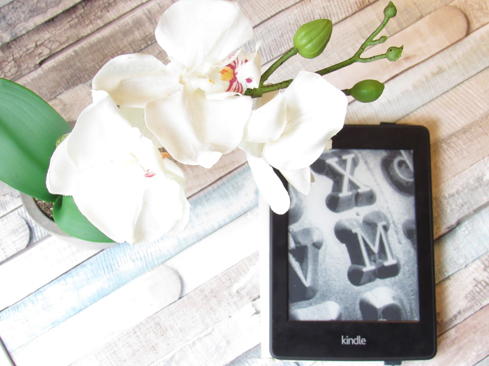 Kindle with white orchid