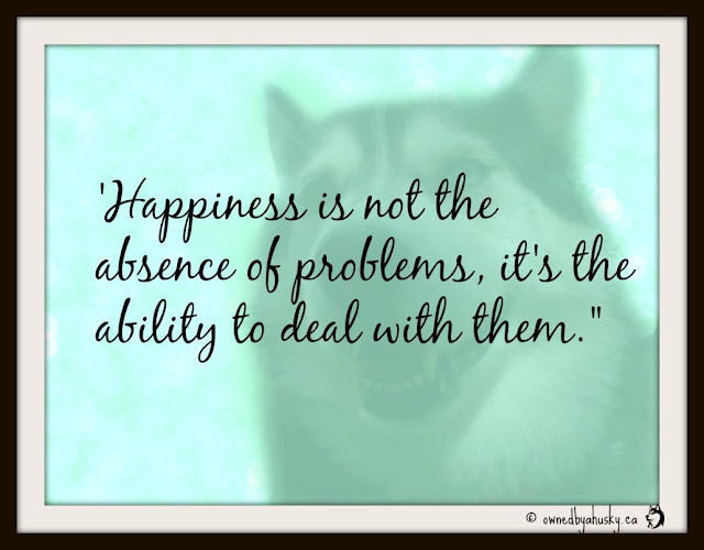 Happiness Is Not The Absence of Problems  quote