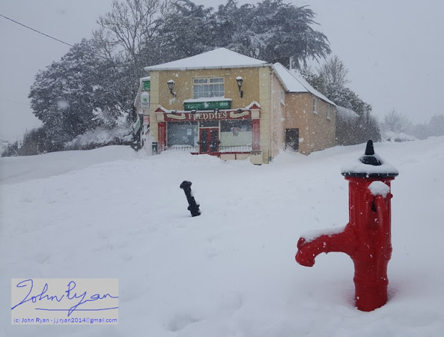 (Freddies Post Office, Castlebridge, Wexford. Photo copyright (c) John Ryan)