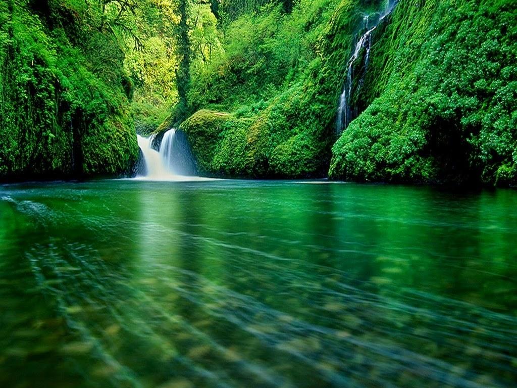 Animated Waterfall Wallpaper