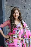 Angela Krislinzki Rogue Movie Fame Telugu Actress in Saree Backless Choli 118.JPG