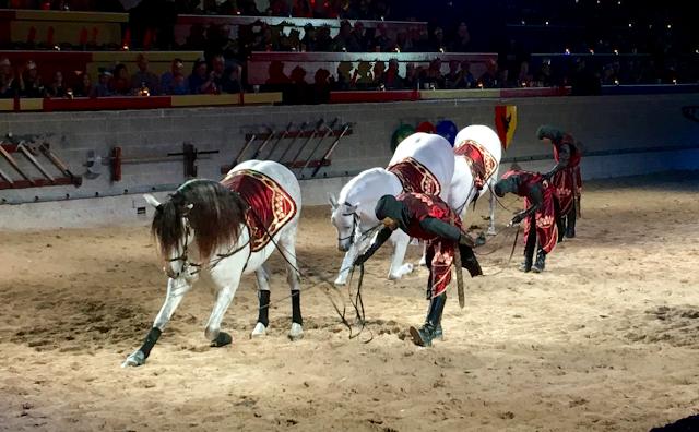 Medieval Times Toronto #MedievalTimesTO #mtfan - Andalusian Horses